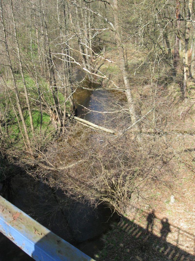 rzeka-liwa